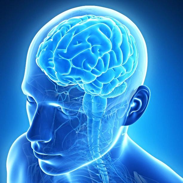 Комплекс МРТ исследований: шейный отдел + головной мозг + МР-ангиография